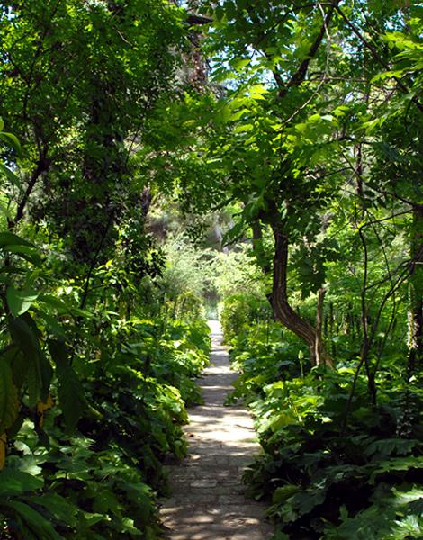 The Arboretum Of The Garden