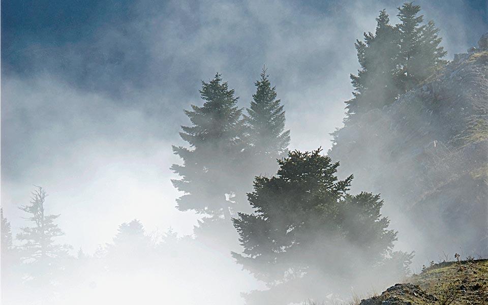 <h5>Mt Ziria/Kyllini</h5>