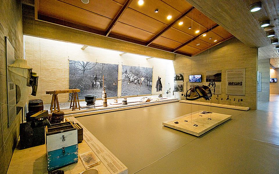 <h5>Lake Stymphalia Museum</h5>