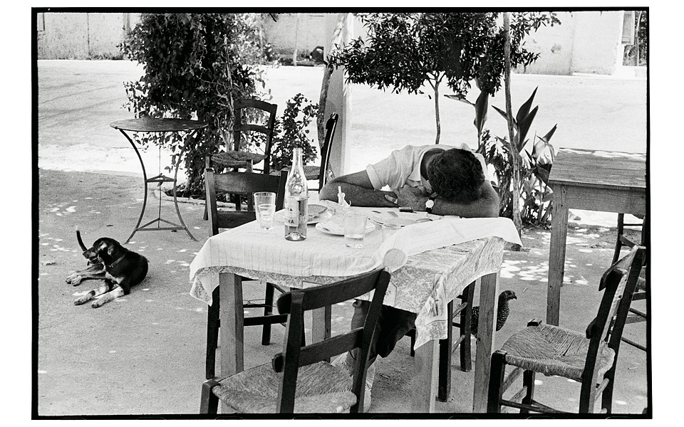 The art of drinking bottoms up greece is the four legged guard keeps watch making sure that no one disturbs his friend bent over the table by wine induced melancholy workwithnaturefo