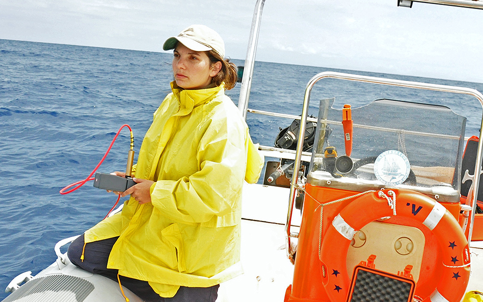 archipelagos_anastasia-survey