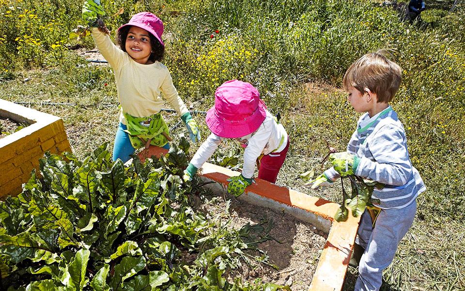PLAY AND EAT TOPERIVOLISTIVARI-KIDS-3